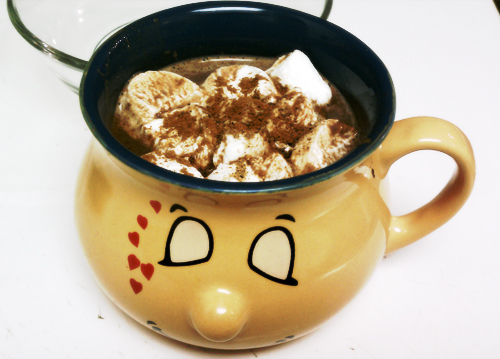 Cup of Cinnamon Hot Chocolate