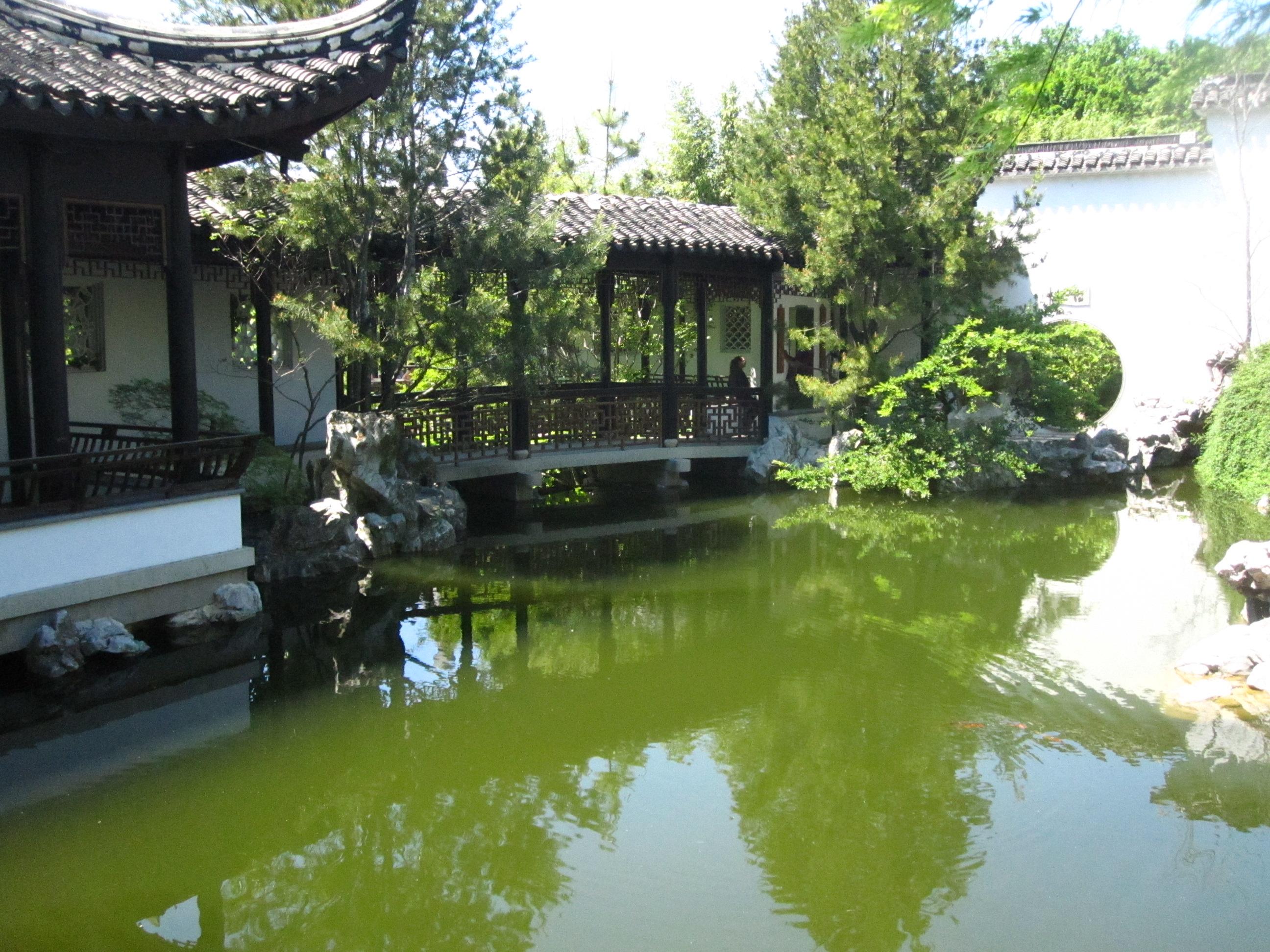 Chinese Scholar's Garden in Staten Island