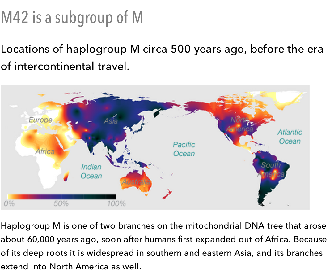 Haplogroup M
