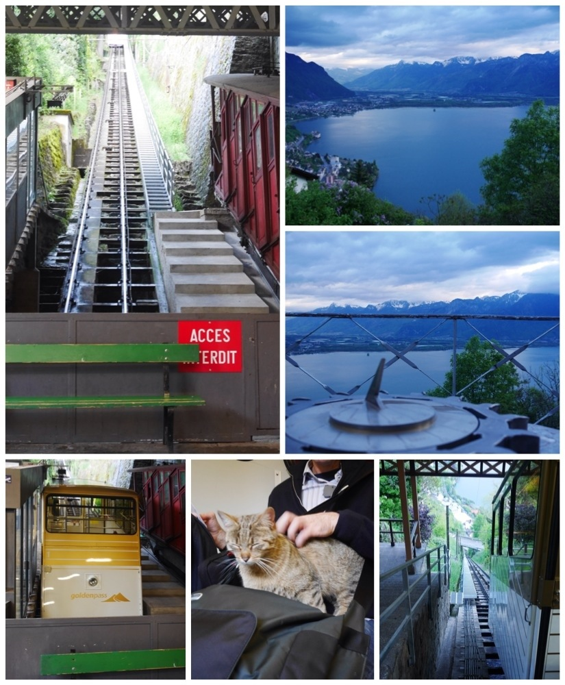 Cog Train to Glion