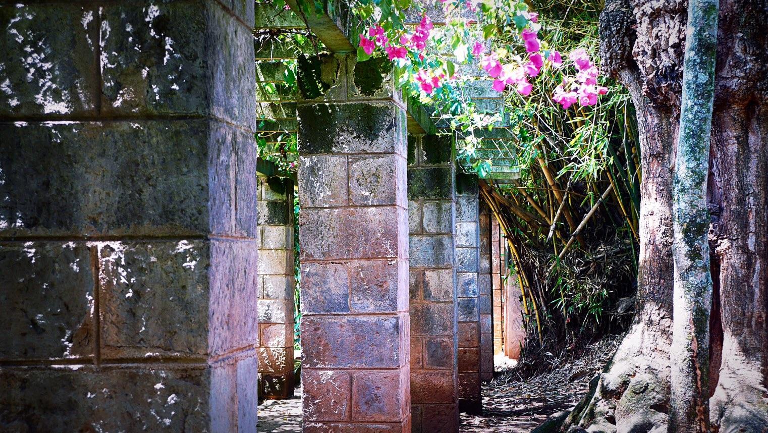 Karen Blixen House Museum Garden
